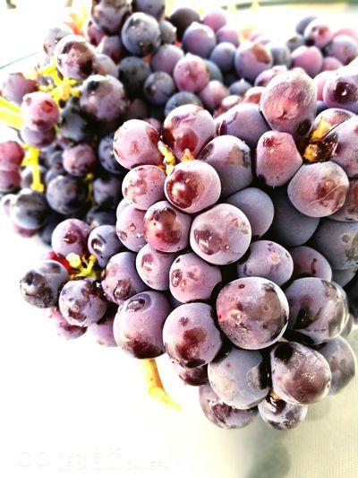Winegrapes GREECE ♥♥ Food Freshness Indulgence