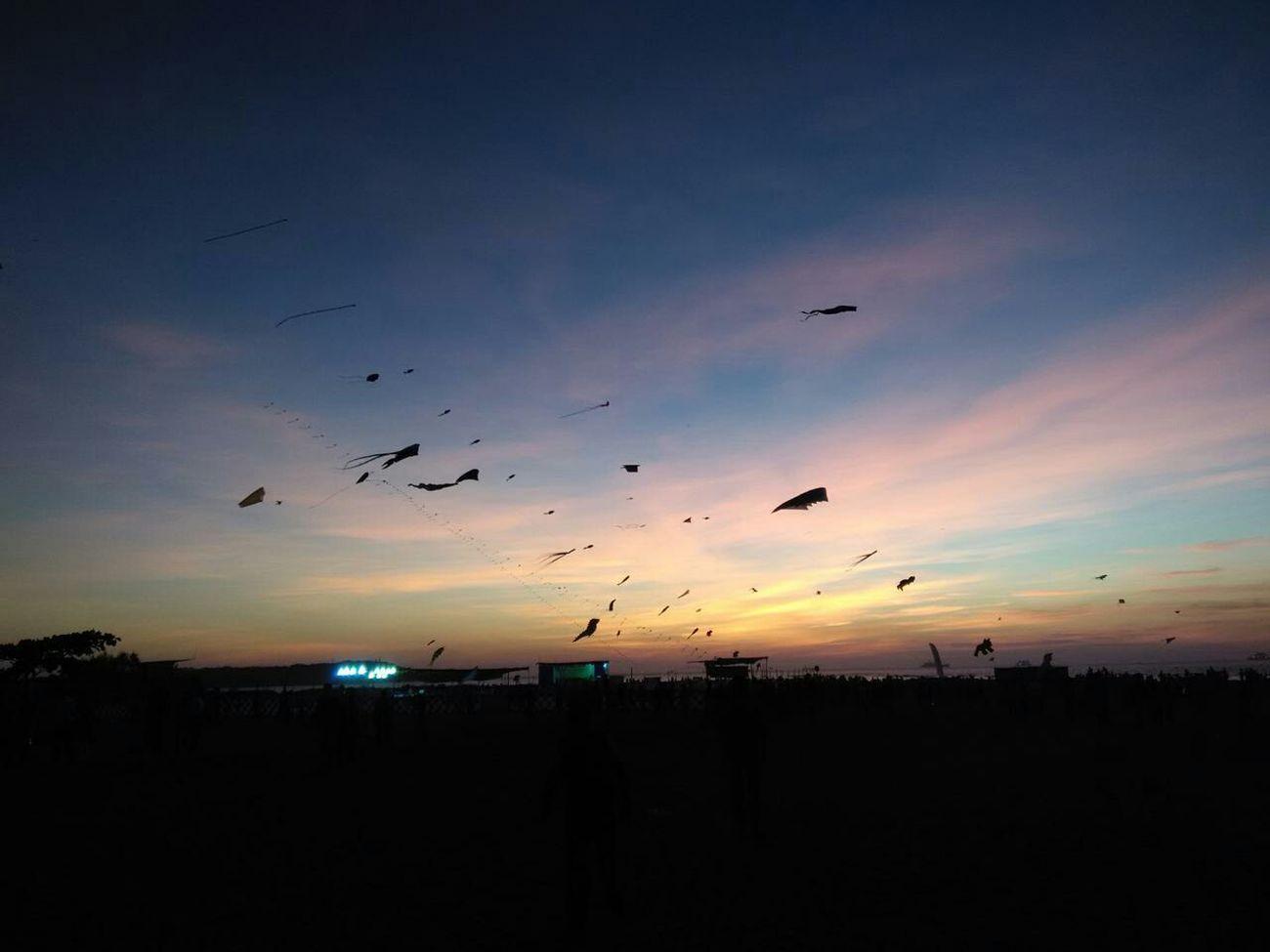 Goa India Kite Competition Miramar Beach