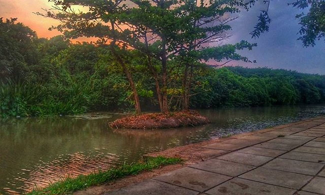 Evening Friends Randomcapture Bellamwila Park Sunset River Awesome Bikeride Instaday Instapic Instagrammer Instanature Spreadtheloveforsrilanka Nature Tagsforlikes Likeforlikes Likes4likes