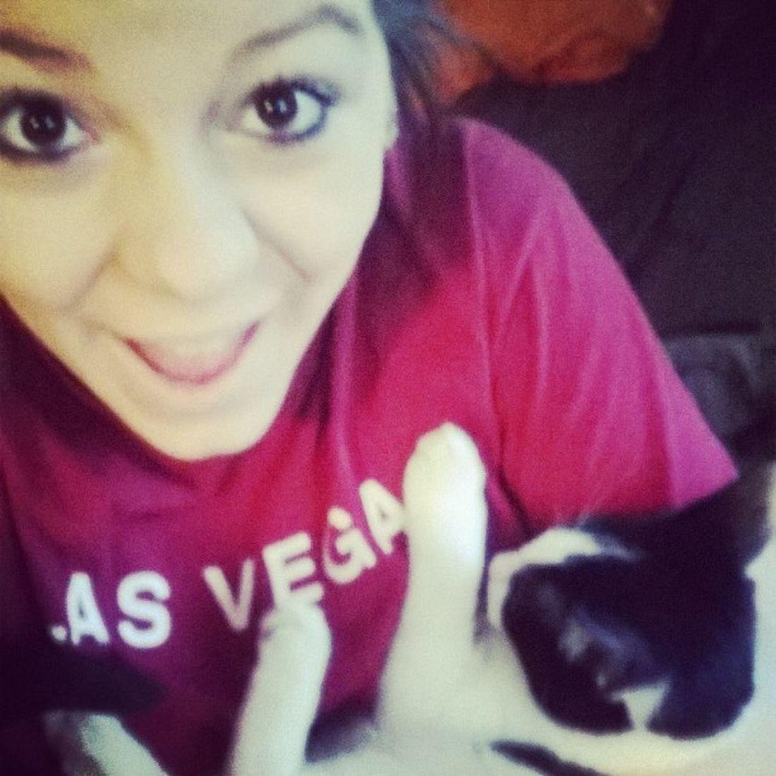 i wuuuuv my kitttttty ?? Cat Love MOOMOO Cute
