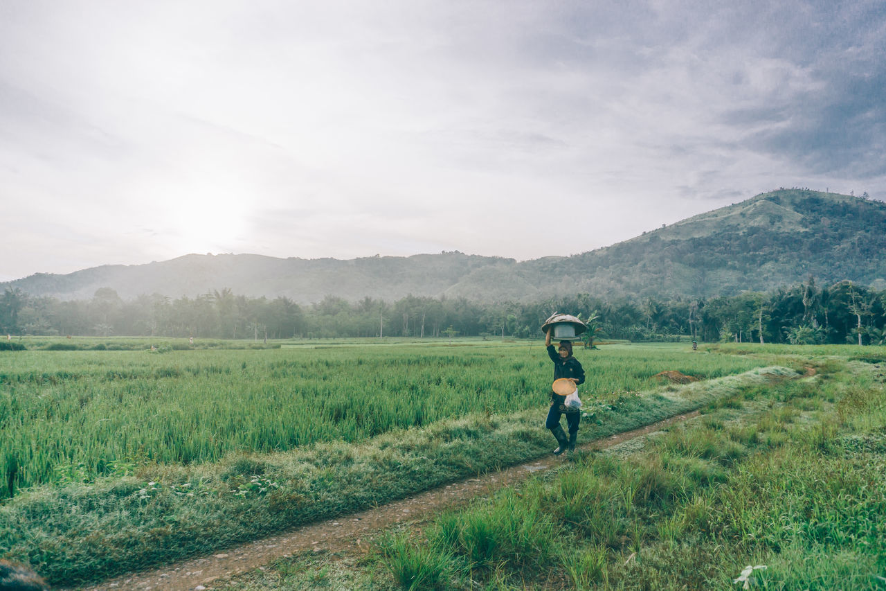 Adult Adults Only Agriculture Beauty In Nature Day Farmer Field Fog Landscape Mountain Nature One Person Outdoors People Real People Rural Scene Sky Working EyeEm New Here