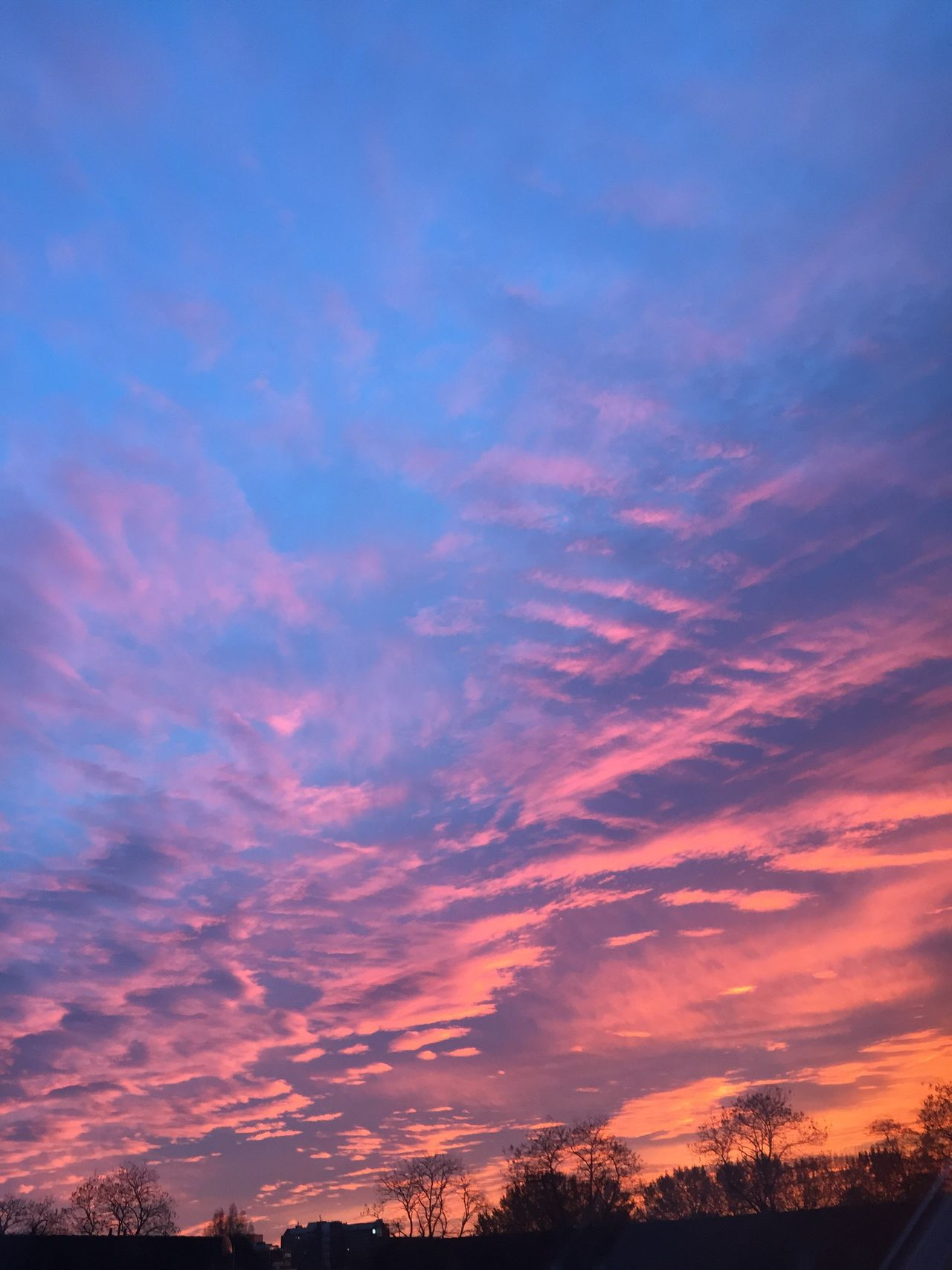 Sunset Beauty In Nature Sky And Clouds TakeoverContrast Sky Photography Nofilter