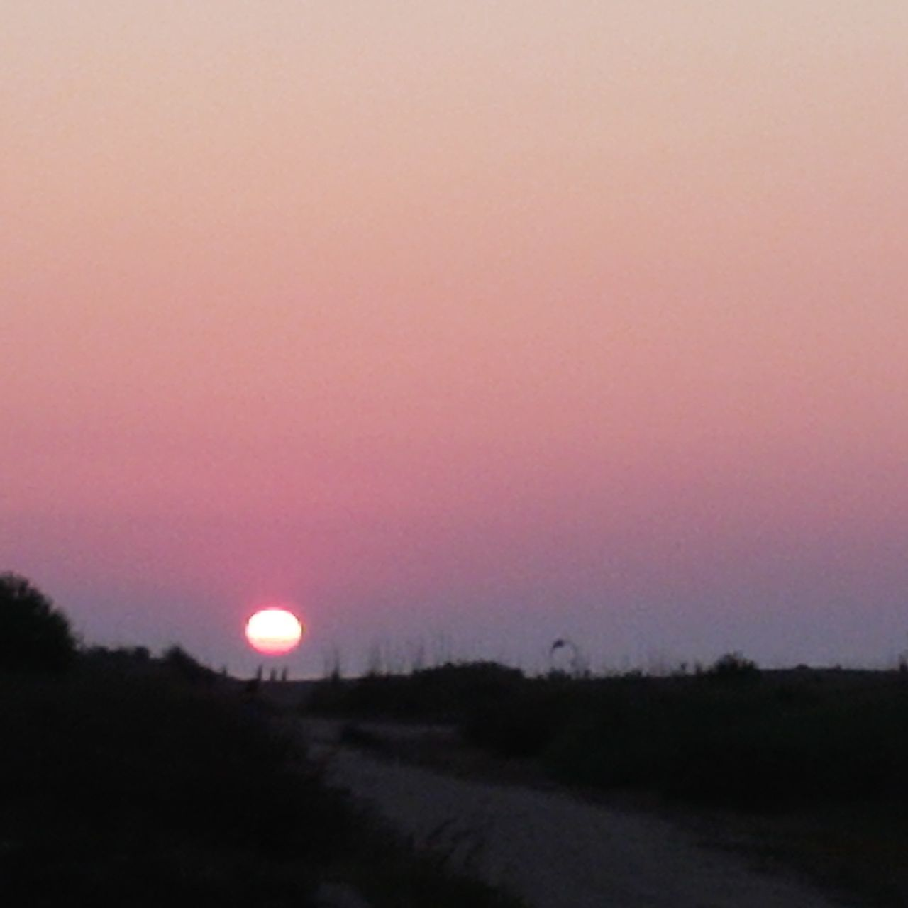beauty in nature, sunset, nature, scenics, moon, field, tranquil scene, tranquility, no people, landscape, outdoors, sun, sky, clear sky, tree, day, astronomy