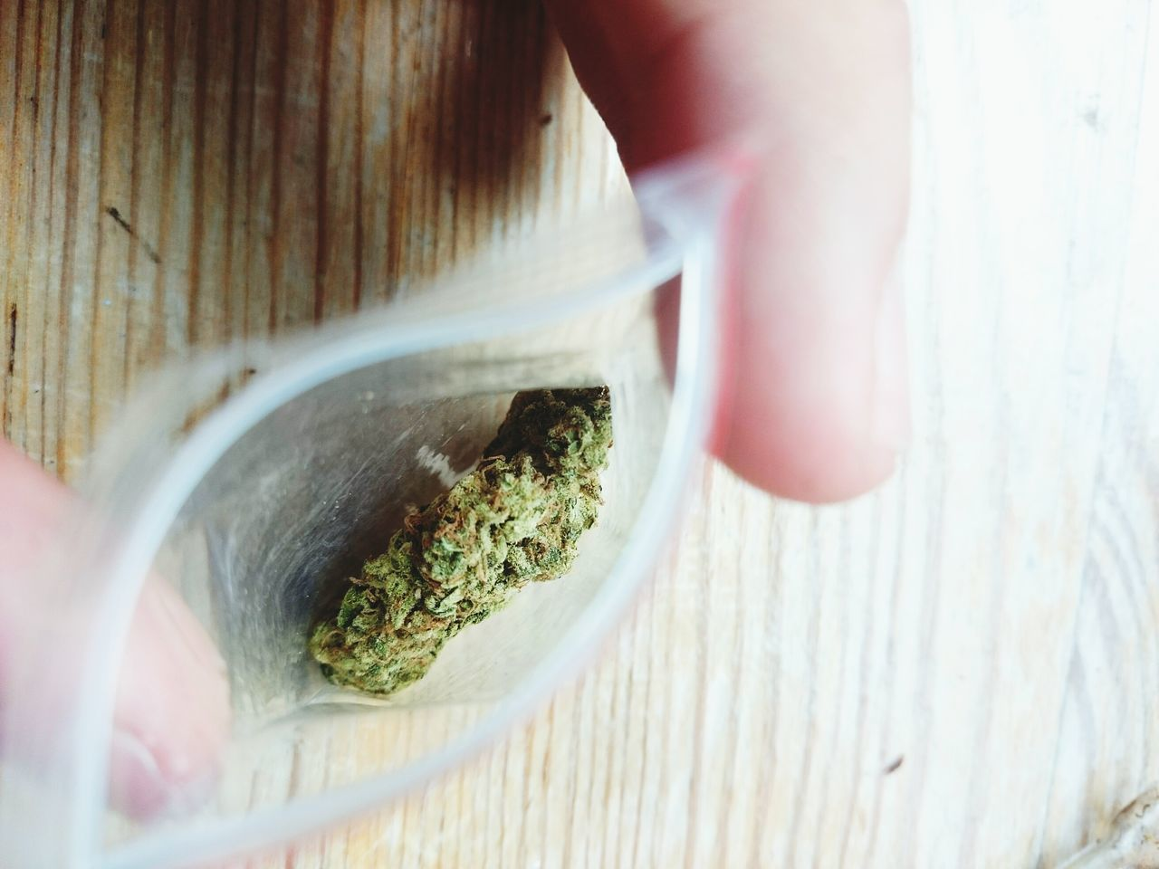 Beautiful stock photos of weed,  Bad Habit,  Close-Up,  Detail,  High Angle View
