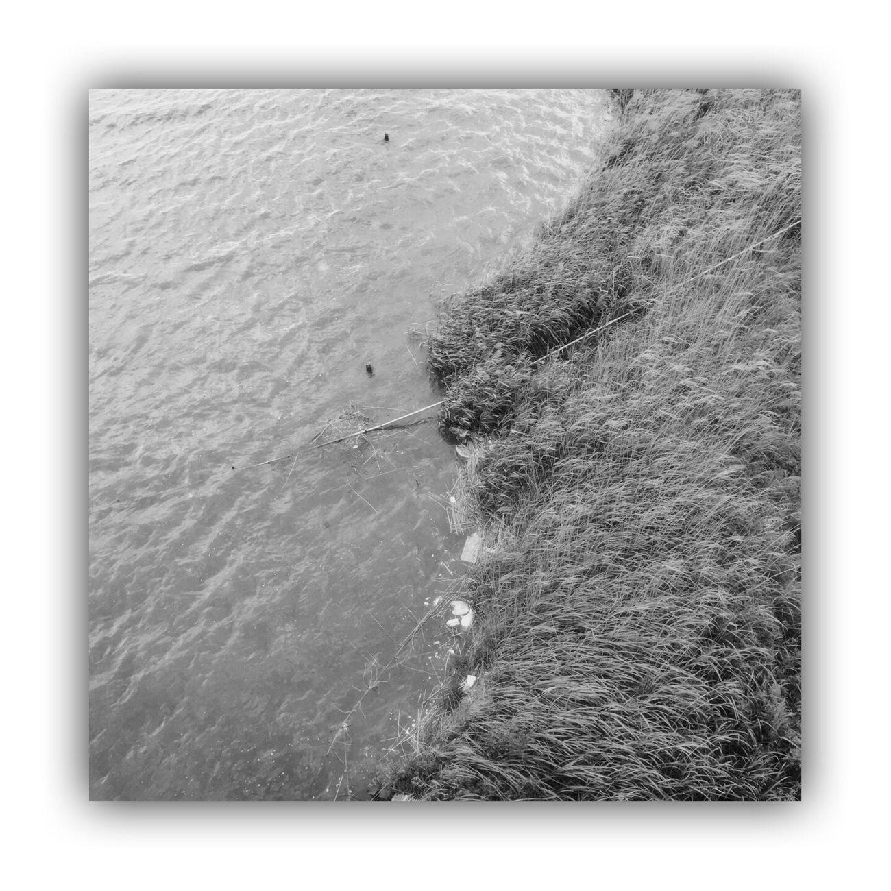 「川を橋の上から撮る」 I Took The Rivers From On The Bridge River Bridge Monochrome_life Blackandwhite Light And Shadow Monochrome
