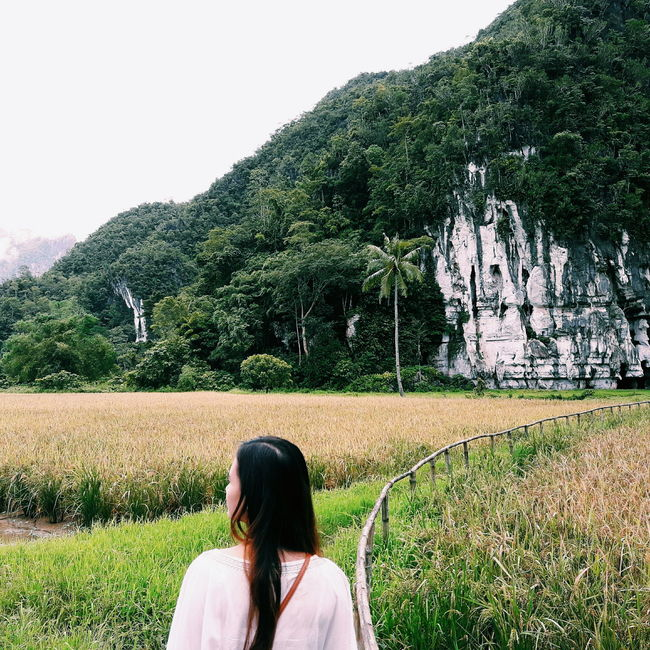 People And Places Green Color Field Long Hair Clear Sky Grass Tranquil Scene Countryside Outdoors Day Tranquility Nature Green Tree Rear View Rural Scene Solitude Photography Peoplephotography Travelers Waderer Wanderlust Wandering Around Aimlessly Grass Mountain View