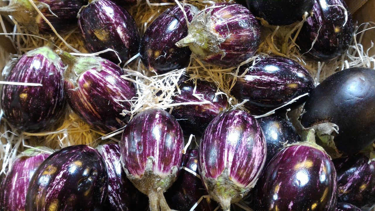 Aubergine eggplants in hay at retail market display Aubergine Backgrounds Choice Close-up Eggplant Fresh Full Frame Harvest Hay High Angle View Indoors  Market Market Stall Multi Colored Natural No People Personal Perspective Retail  Retail Display Sale Shopping Straw The Shop Around The Corner Vegetables Vegetarian Food