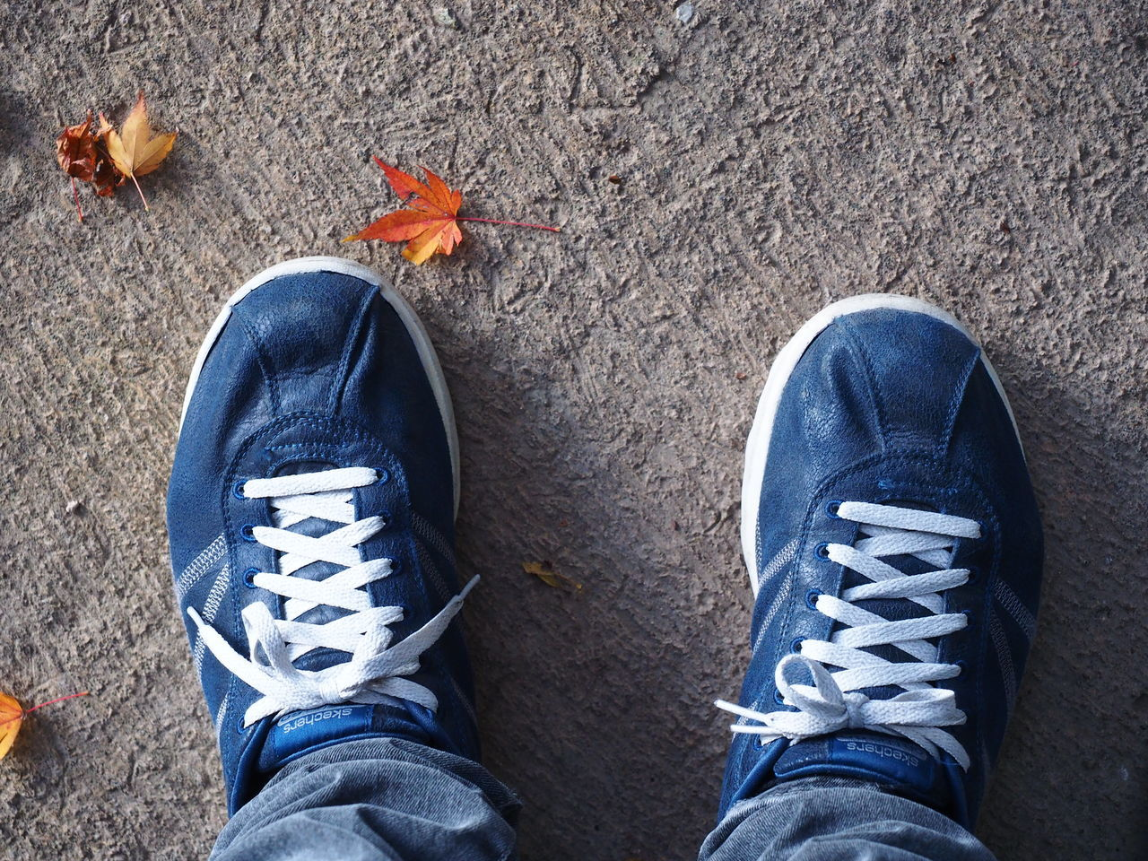Sneaker Background Blue Shoes Blue Sneaker Lifestyles Maple Out Of The Box Shoe Shoes Sketcher Sneakers EyeEmNewHere