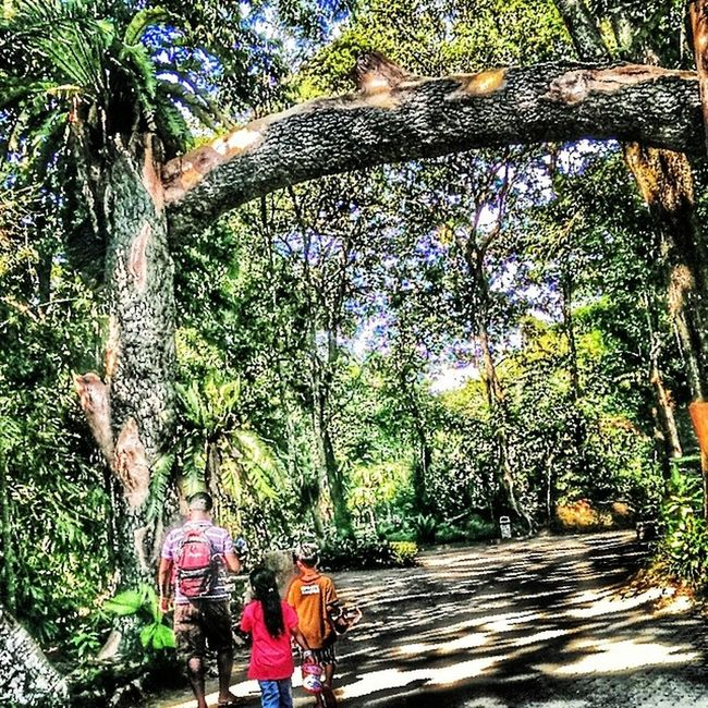 Husband Yuvvan Taaniya Walk togetherjungle green colours holidays happy instalook instapicture instagram instaplace