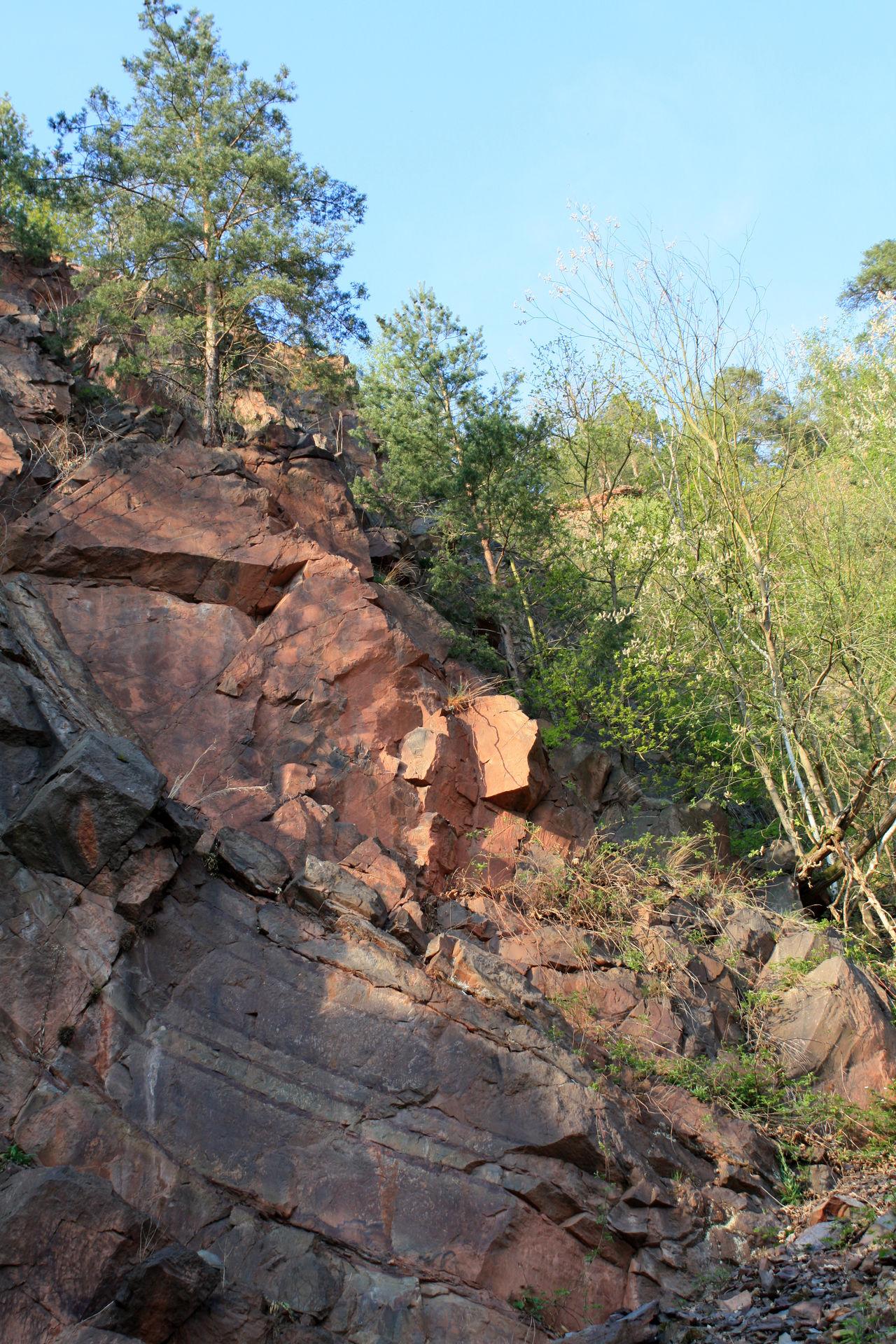 Felsen Geografie Geologie Geology Geschichte Der Erde Gesteine Gesteinsschichten Landscape Nature Outdoors Plant Plattenbewegung Plattentektonik Rock Rock - Object Rock Formation Steine Stones Tree