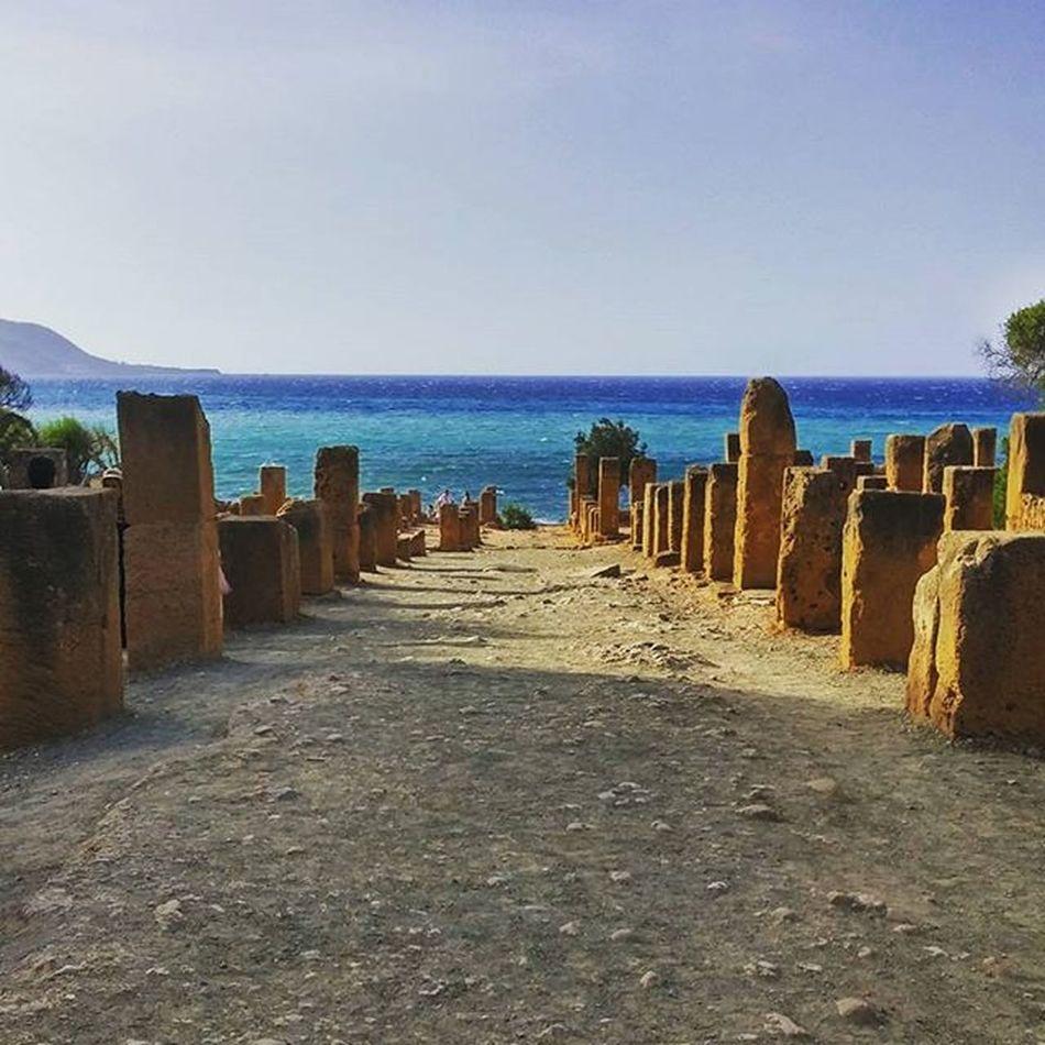 The place where the ruins meet the deep blue sea. The Roman Ruins of Tipasa. Algeria Unescoworldheritage Tourismalgeria Hiddengems AncientCity Romancity Historicruins Instatravel Instamoments Instacaptured Instalove Damnwasithotthisday