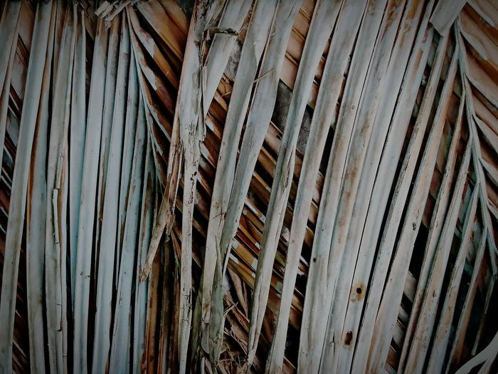 Background Backgrounds Full Frame Pattern No People Wood - Material Textured  Close-up Brown Outdoors Nature Day