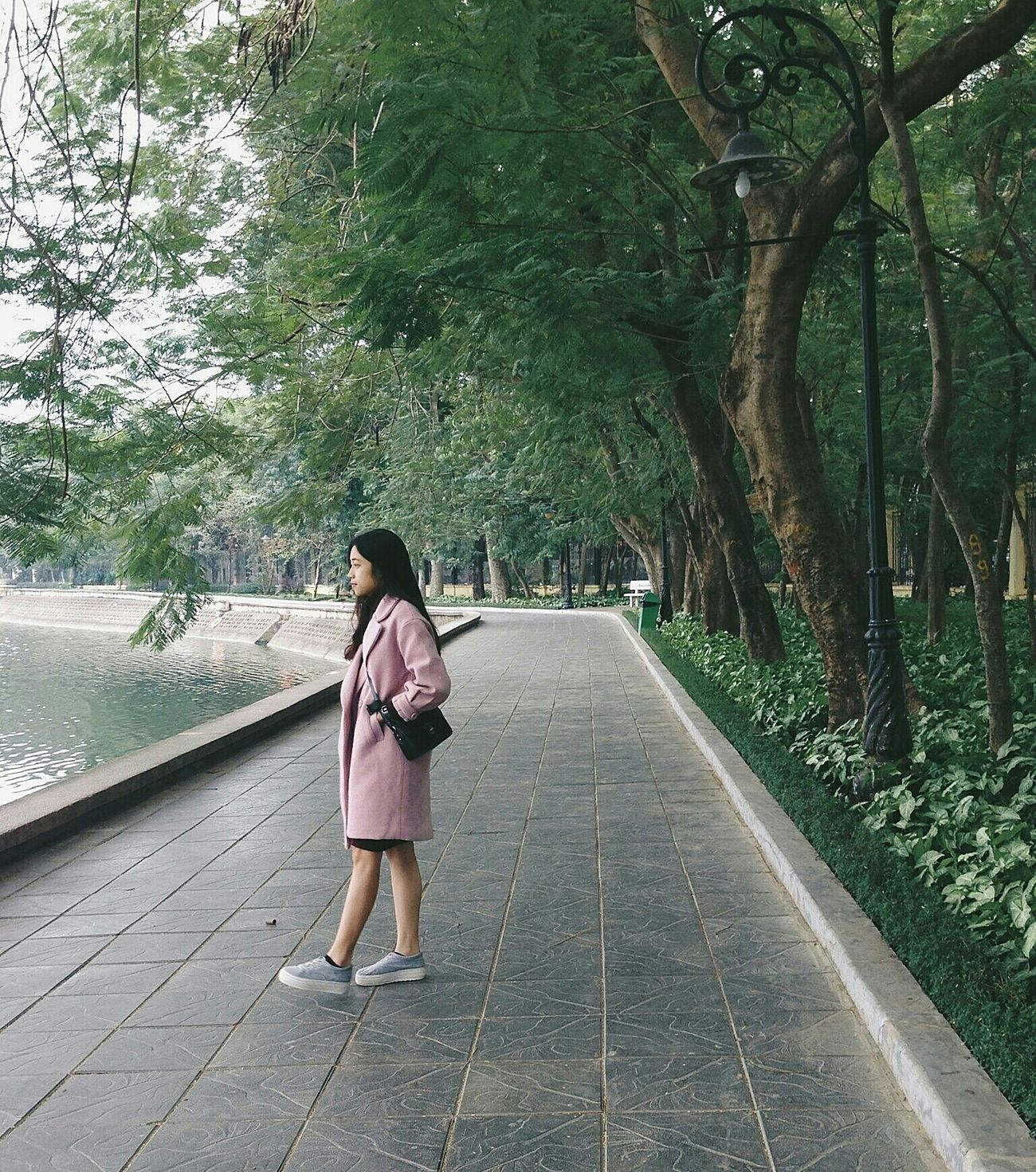Tree Outdoors Day Girl Happymoments Plant Green Color Woman Of EyeEm Lifestyles Hanoian Vietnamphotography Nature Tree Park Outfit Ootd Streetstyle Fashion