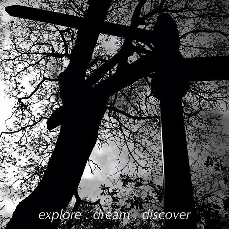 explore.dream.discover Jj  Instagramers Nature Instagood Blackandwhite Instagramhub Trees Instadaily Sign Jj_forum Bw Jj_forum_0411 Iphoneonly Photooftheday Iphonesia Picoftheday All_shots Instamood Bestoftheday Igers IGDaily