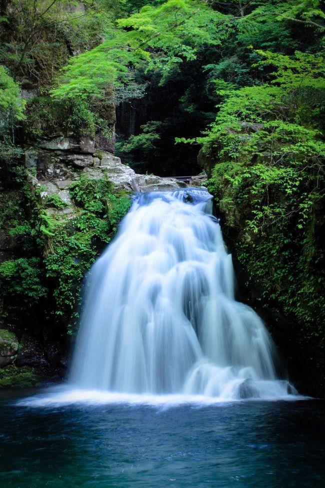 The Great Outdoors - 2016 EyeEm Awards EyeEm Best Shots EyeEm Nature Lover 千手滝 赤目四十八滝 Waterfall
