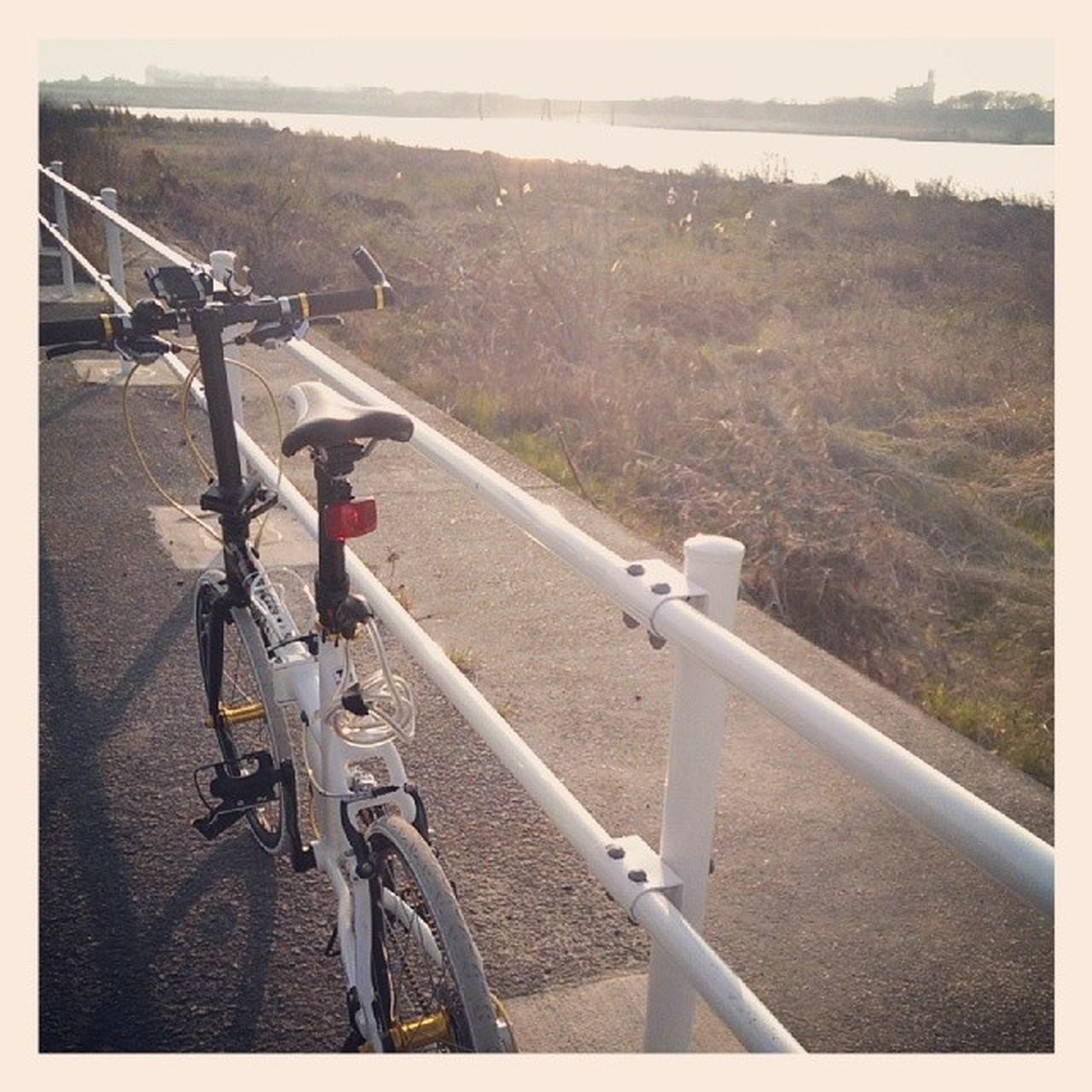 bicycle, transportation, mode of transport, day, railing, land vehicle, outdoors, no people, road, nature, landscape, sky, tree