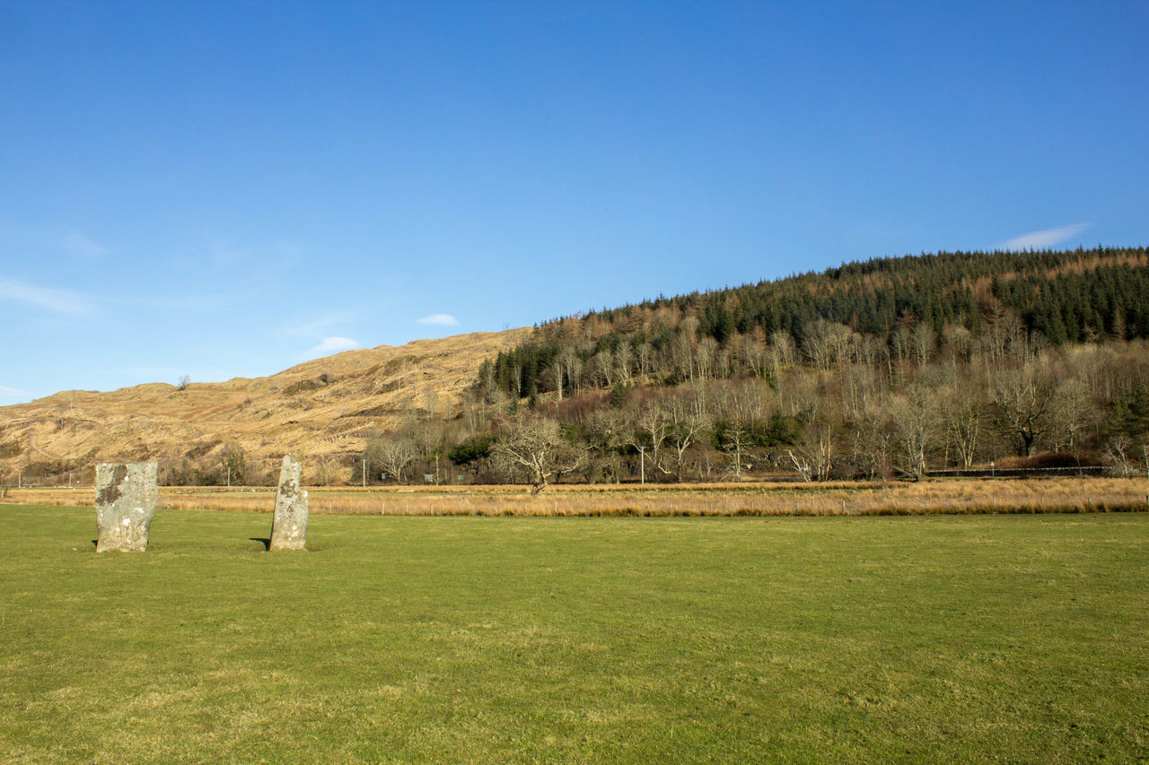 Beauty In Nature Blue Day Field Grass Grassy Green Green Color Growth Hill Idyllic Landscape Mammal Mountain Nature No People Non-urban Scene Outdoors Remote Scenics Scotland Sky Standing Stones Tranquil Scene Tranquility