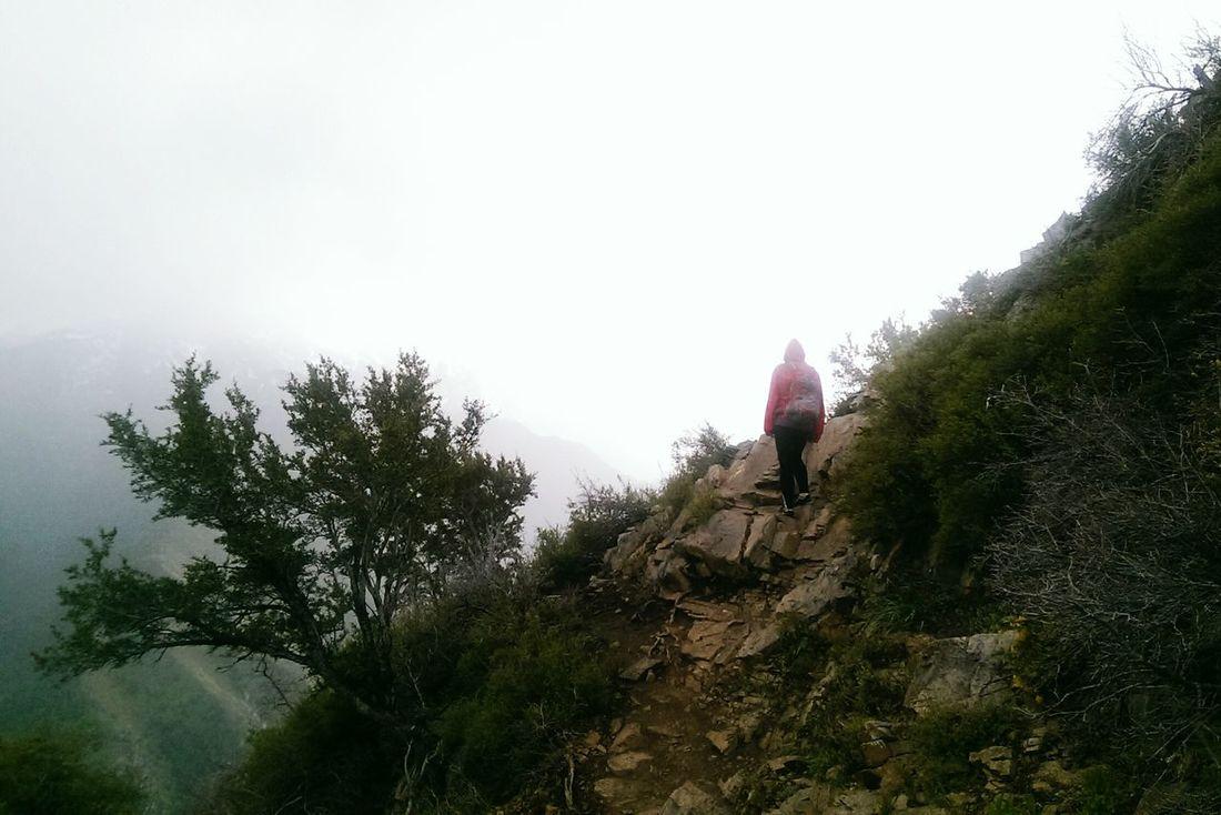 Millcreek Canyon Millcreekcanyon Hiking Adventures