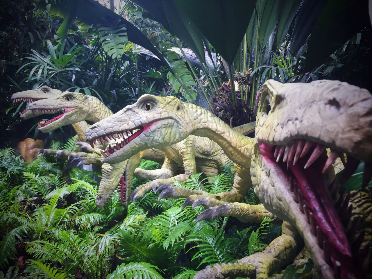 Animal Themes Dinosaur Mouth Open Extinct No People Outdoors Animals In The Wild Dinosaurs Singapore Zoo Singapore Zoological Garden Singapore Zoo. Iphone 6 IPhone Photography Dinosaur Iphonephotography