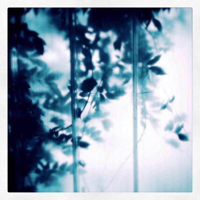 Parkhaus Nature IPhone Blue Parkhaus