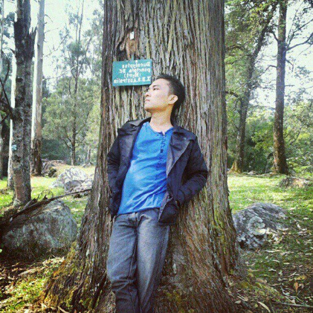 Latepost Kamerahpgue Asianboy Ikece hangout