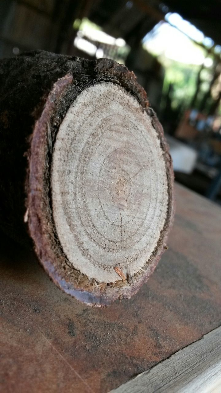 Close-Up Of Log On Table