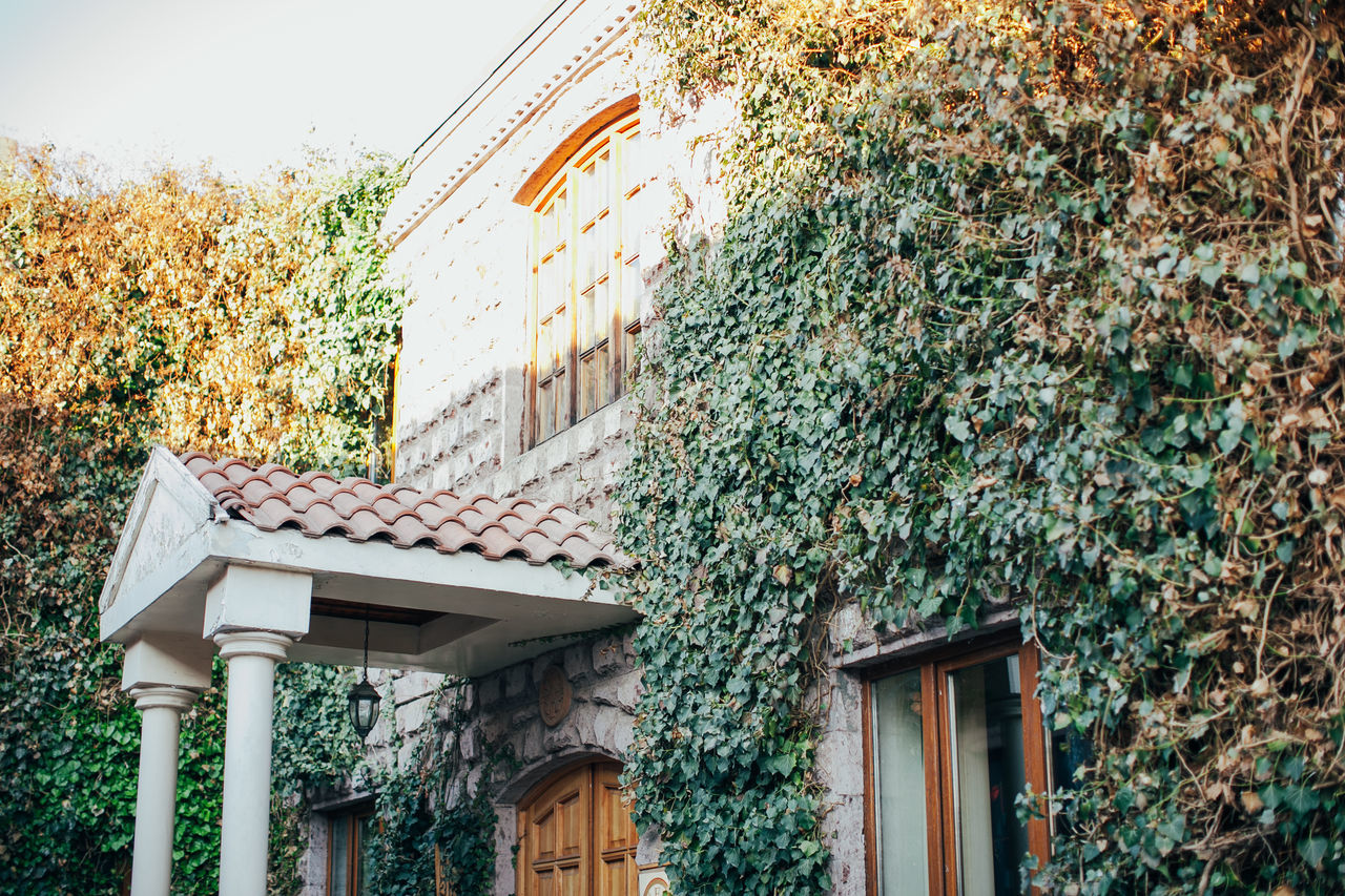 Architecture Building Exterior House Nature Outdoors Plant Tree