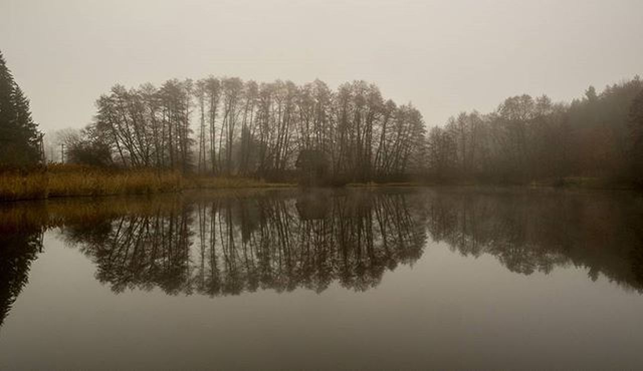 reflection, lake, tree, water, no people, tranquility, symmetry, scenics, nature, outdoors, beauty in nature, day, sky