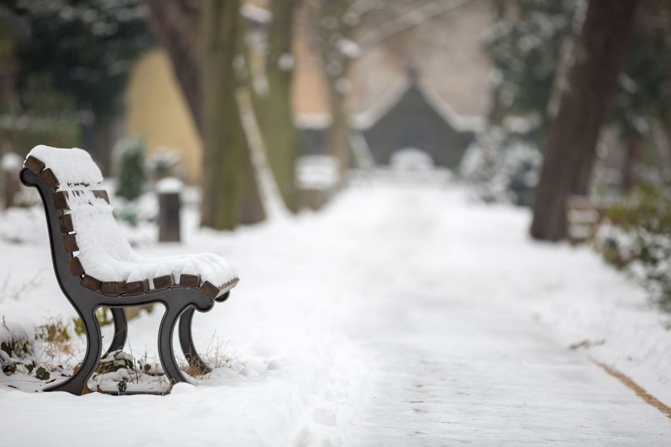 Beautiful stock photos of schnee, Absence, Bench, Berlin, Cold Temperature