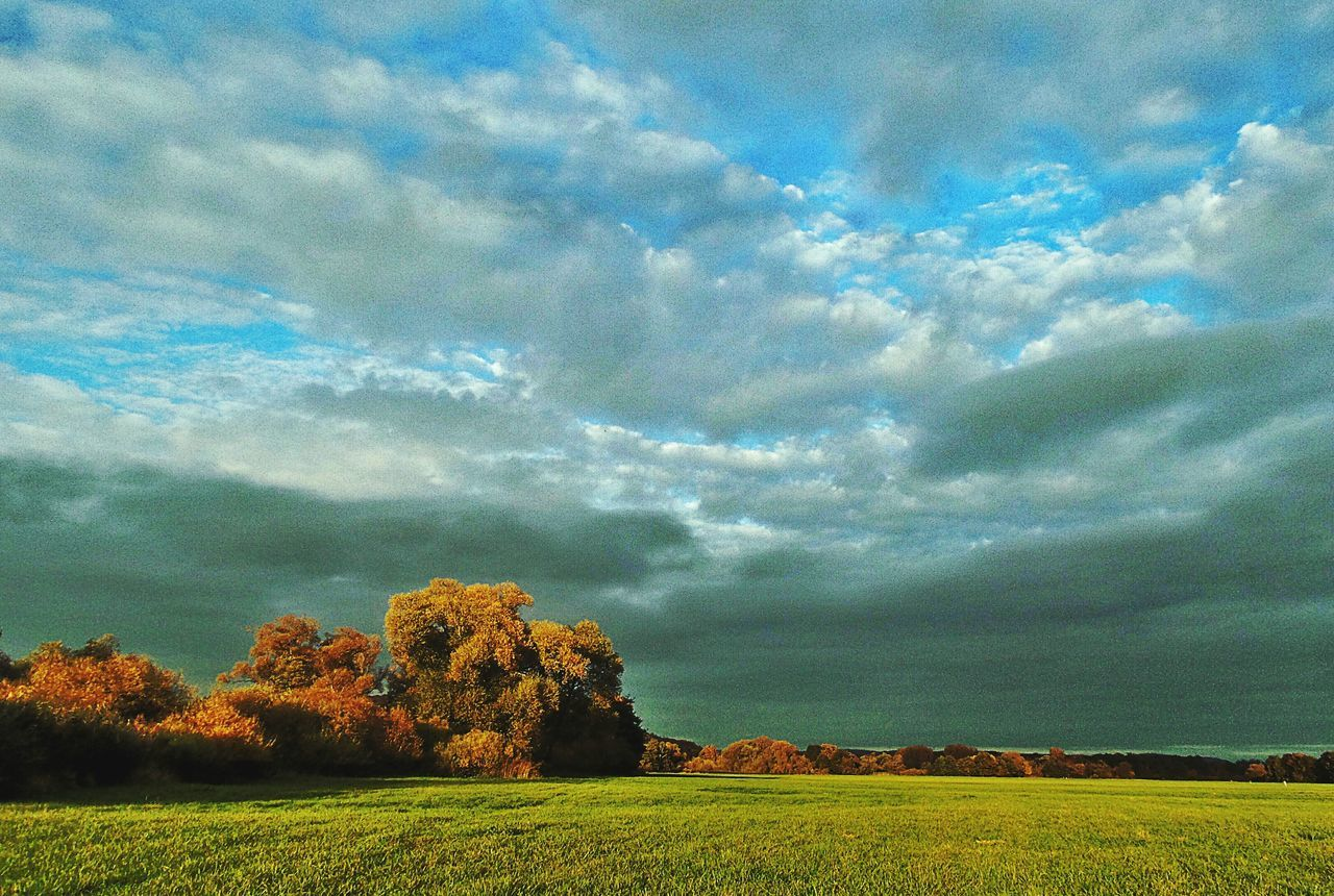 A Storm Is Coming Unusual Light Conditions Low Angle View Last Sunrays Before The Storm Meadowlands Wheatherchange Nature Landscape Autumn Mood Light And Shadow Dramatic Sky Autumnweather Kinzig Auen Langenselbold Germany🇩🇪