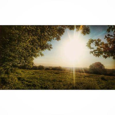 Bretby Landscapehunter Ig_britishisles Hidden_uk Icu_britain Loves_united_kingdom Loves_landscape Fiftyshades_of_nature