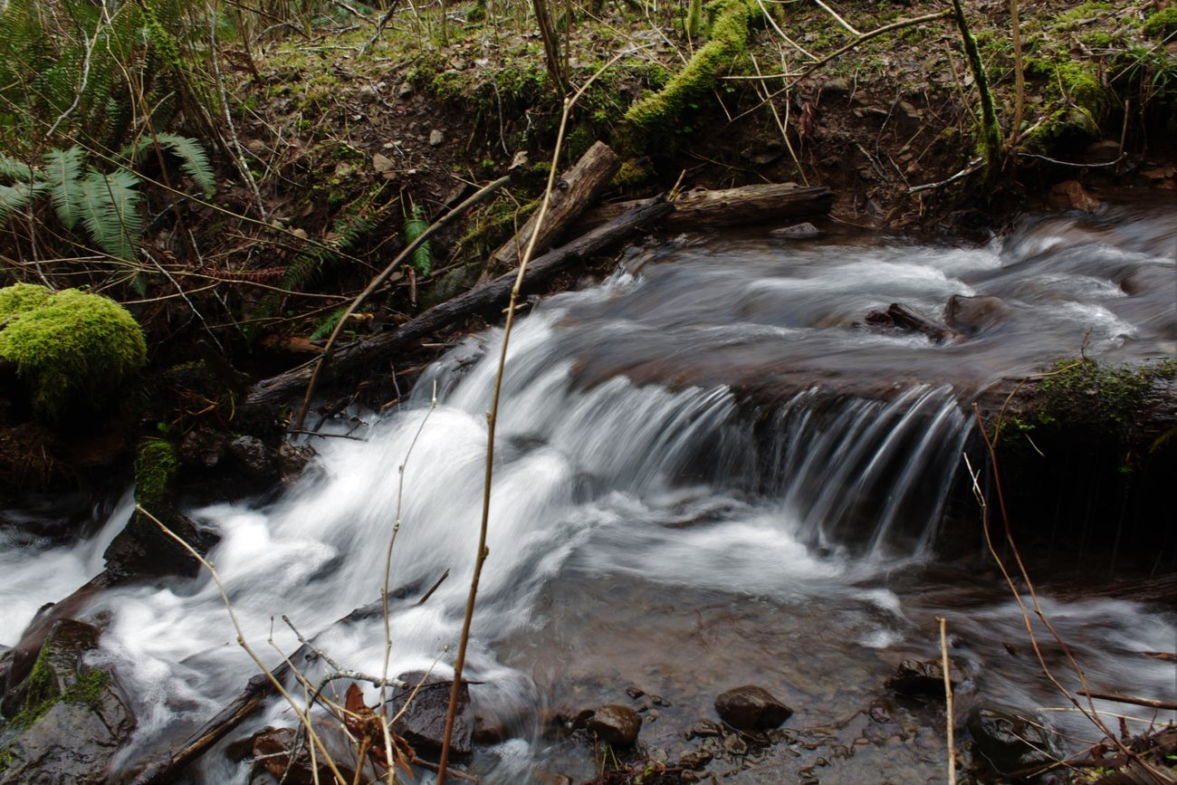 Beautiful Nature Beauty Beauty In Nature Canon Canonphotography Cold Cold Temperature Flowing Flowing Stream Flowing Water Motion No People Relaxing Relaxing View Slow Shutter Slow Shutter Speed Speed Stream Washington Washington State Water Water Flow Water Flowing Down Water Flowing Over Rocks Waterfall