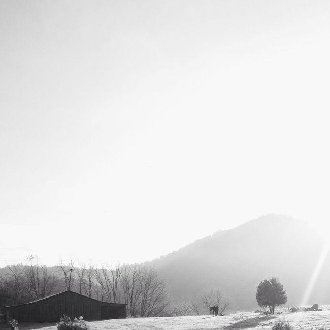 Morning light Beautiful Blackandwhite Landscape