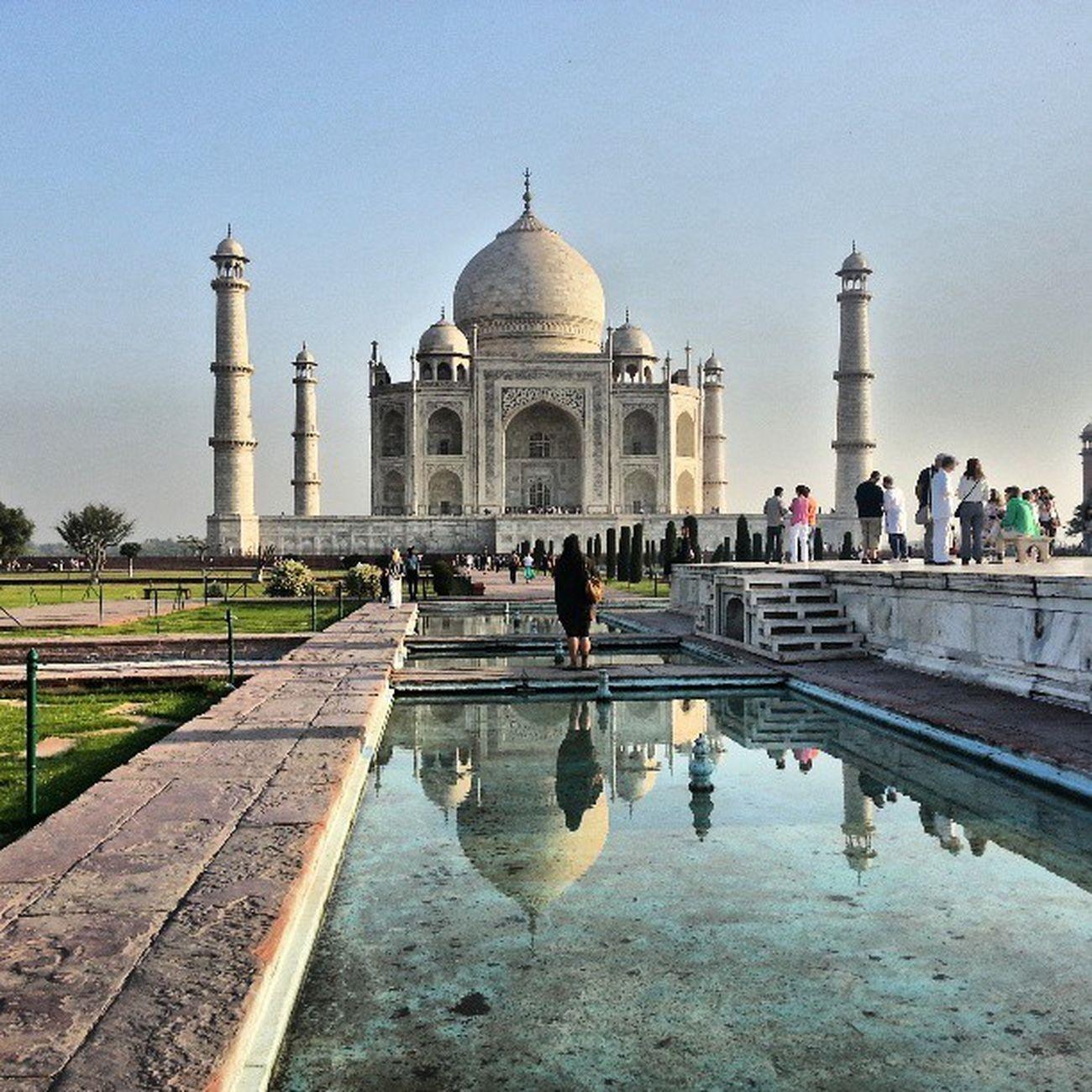 Taj Thursday.