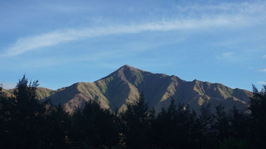 Zambales mountain & pine trees Mountain Nature Landscape Tranquility Scenics Sky Beauty In Nature Outdoors
