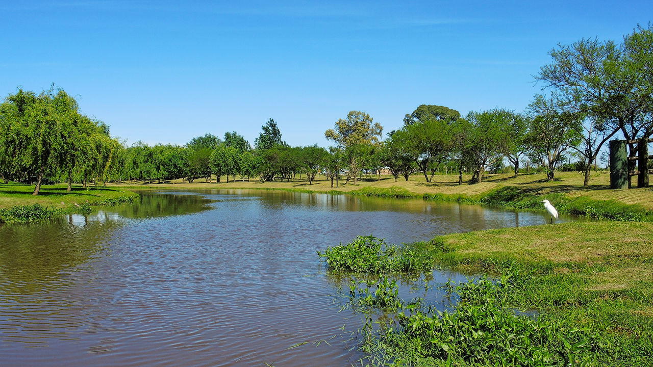 Clear Sky Day Entre Rios Green Color Growth Lake Landscape Nature No People Outdoors Reflection Santa Anita Sky Travel Destinations Tree Water
