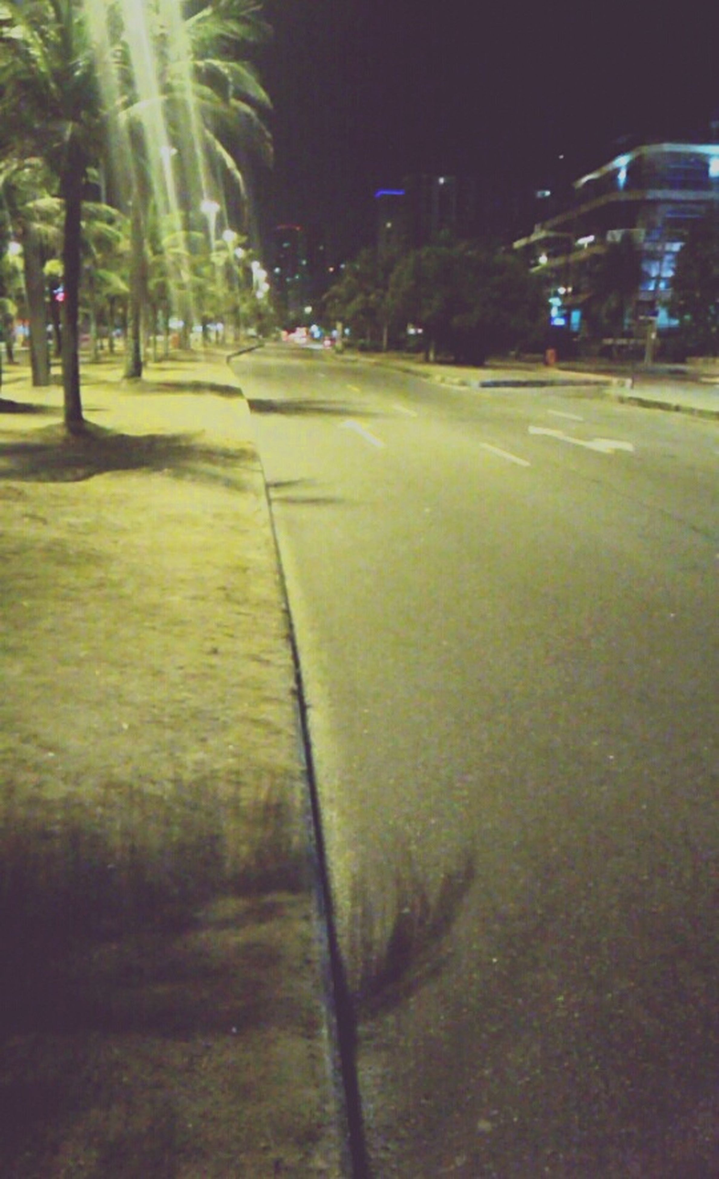 night, tree, road, grass, illuminated, street, transportation, the way forward, green color, outdoors, street light, field, park - man made space, no people, empty, nature, diminishing perspective, growth, tranquility, incidental people
