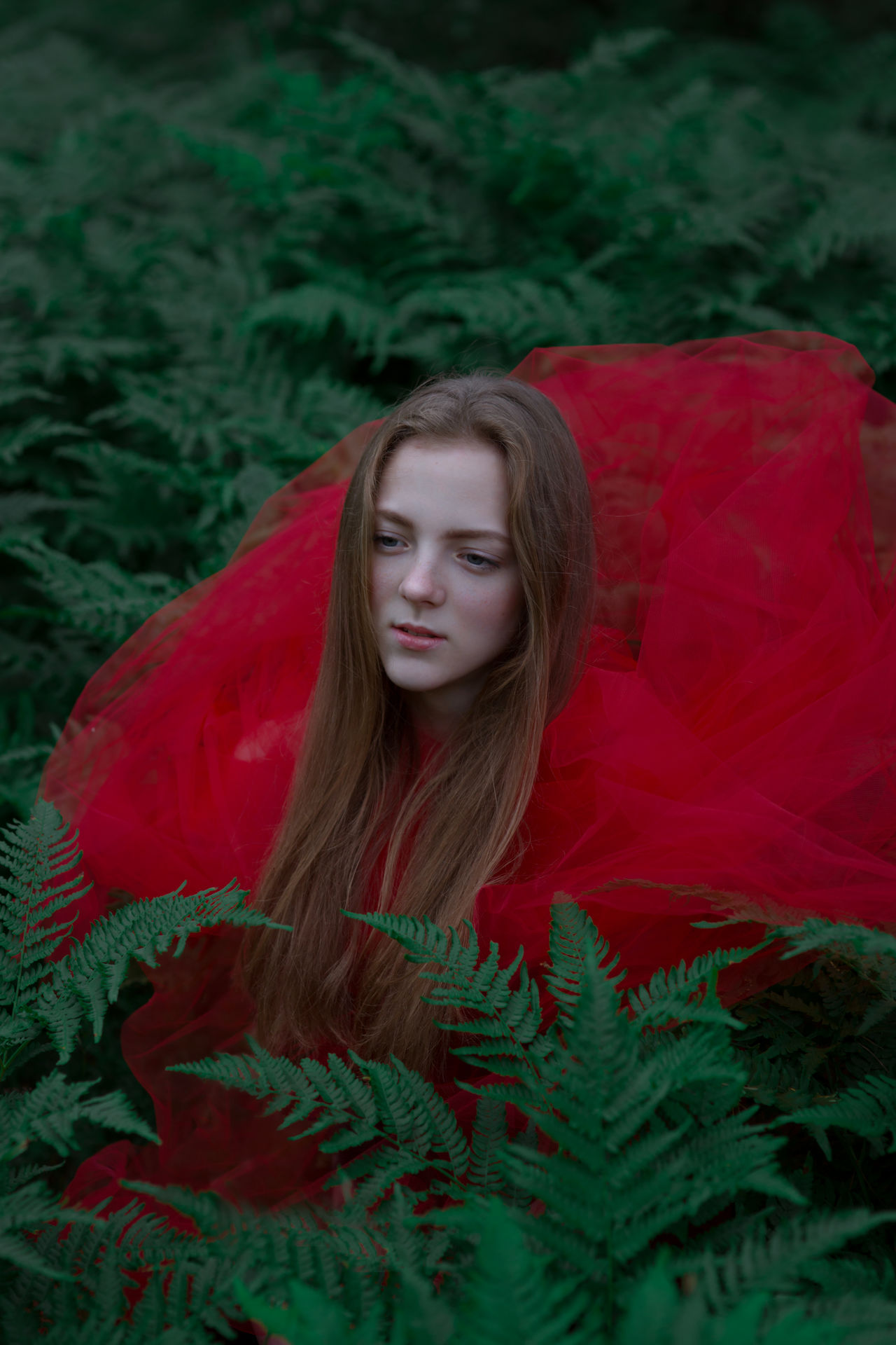 Adult Beautiful Woman Close-up Day Fern Forest Long Hair Natural Light Portrait Nature One Person Outdoors People Portrait Of A Woman Real People Red Witch Young Adult Young Women
