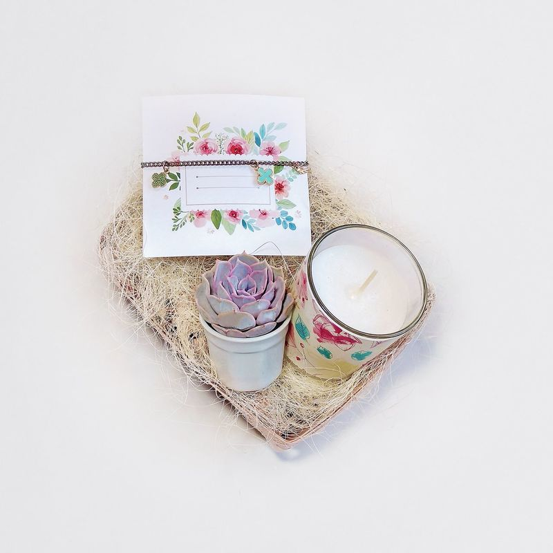Studio Shot Multi Colored Green Bottle Glass Summer Tree Nature Growth Plants Freshness Drinking Glass Transparency Art Is Everywhere Plant Cactus Floristics Decor White Background No People Jar Close-up Indoors  Giftbox Greetingcard