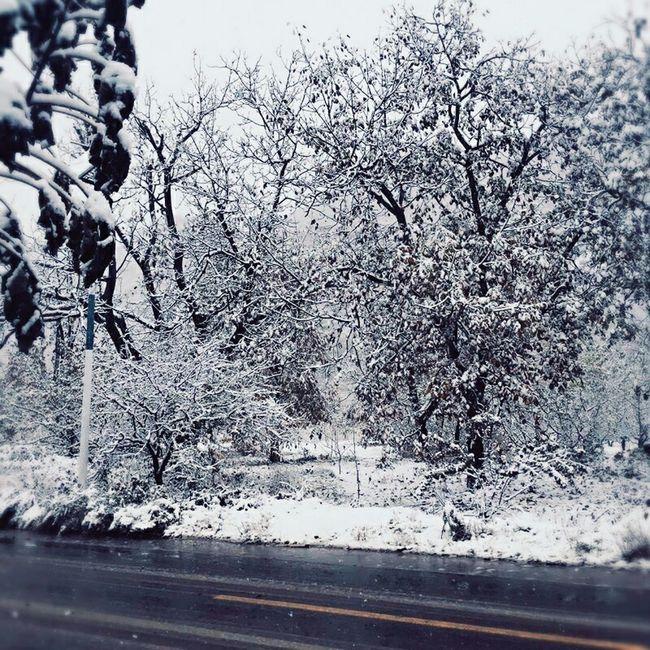 冬天来了😁😁😁😁 冬天