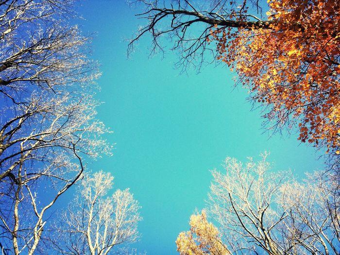 Autumn Colors Being Adventurous Hiking Mountain Air