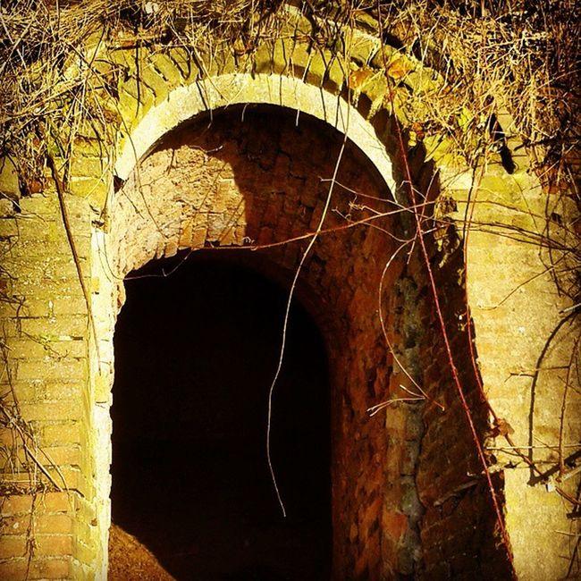 Lekker wandelen in de Blauwekamer Hole Wall Nature ruin
