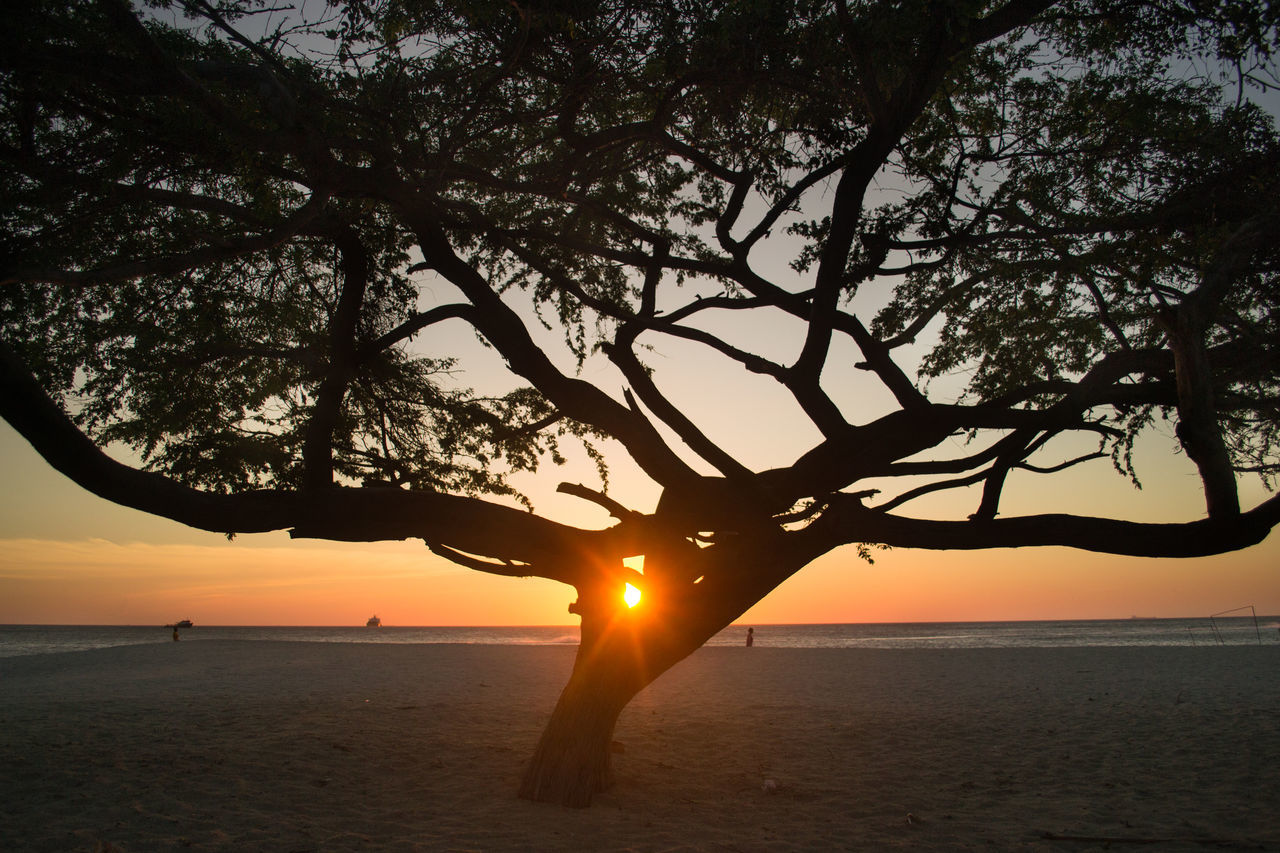 La perla de América Beach Beauty In Nature Colombia ♥  Day EyeEm Best Shots EyeEm Best Shots - Nature EyeEm Nature Lover Horizon Over Water Idyllic Nature No People Orange Color Outdoors Santa Marta, Colombia Scenics Sea Silhouette Sky Sun Sunbeam Sunlight Sunset Tranquility Tree Water