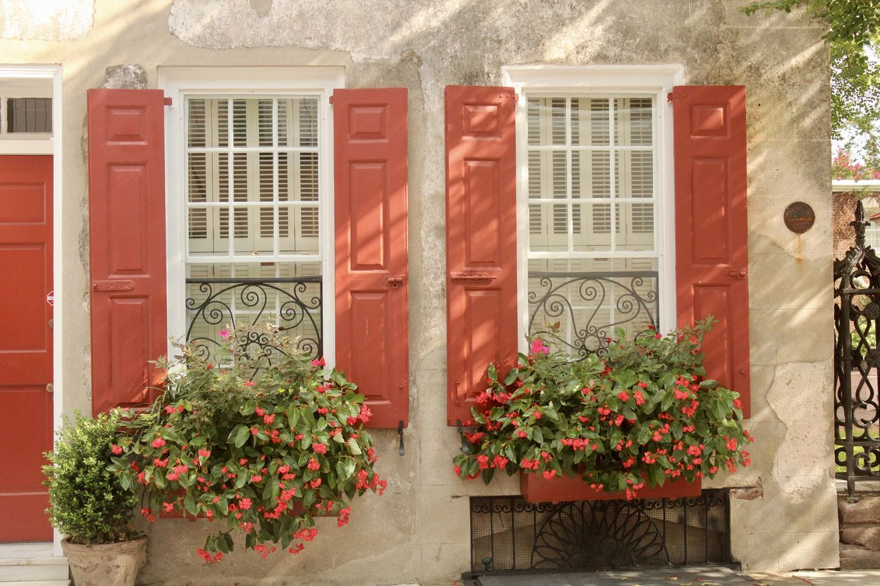 flower, window, plant, architecture, building exterior, growth, house, red, window box, built structure, potted plant, outdoors, day, no people, nature
