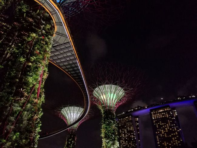 Cities At Night Eyeem Awards 2016 Cities At Night Citiesworldwide Cities By Night Cities Worldwide Citiesskylines Gardens By The Bay Singapore Singapore Marina Bay Sands The Architect - 2016 EyeEm Awards