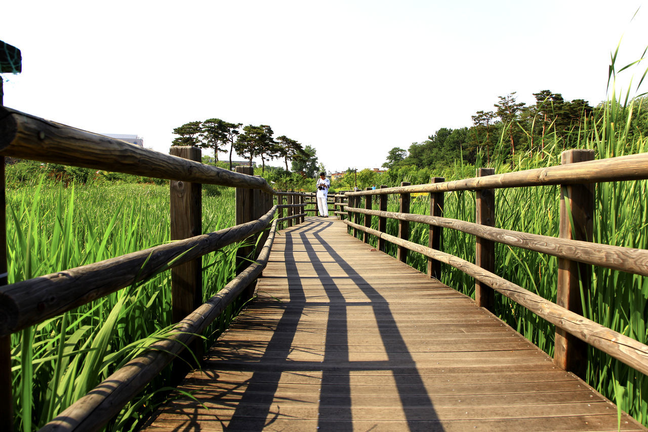 Absence Composition Connection Day Diminishing Perspective Fence Footbridge Footpath Grass Leading Leading Lines Long Narrow One Man Perspective Railing Steps The Way Forward Vanishing Point Walkway Walkwaywhy Wood Wood - Material Wooden Wooden Path