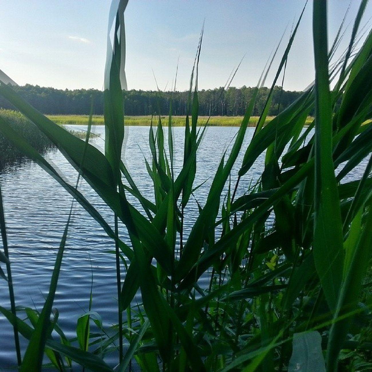 Budylancuckie Podkarpacie Poland Polska trip landscape view lake sun forest