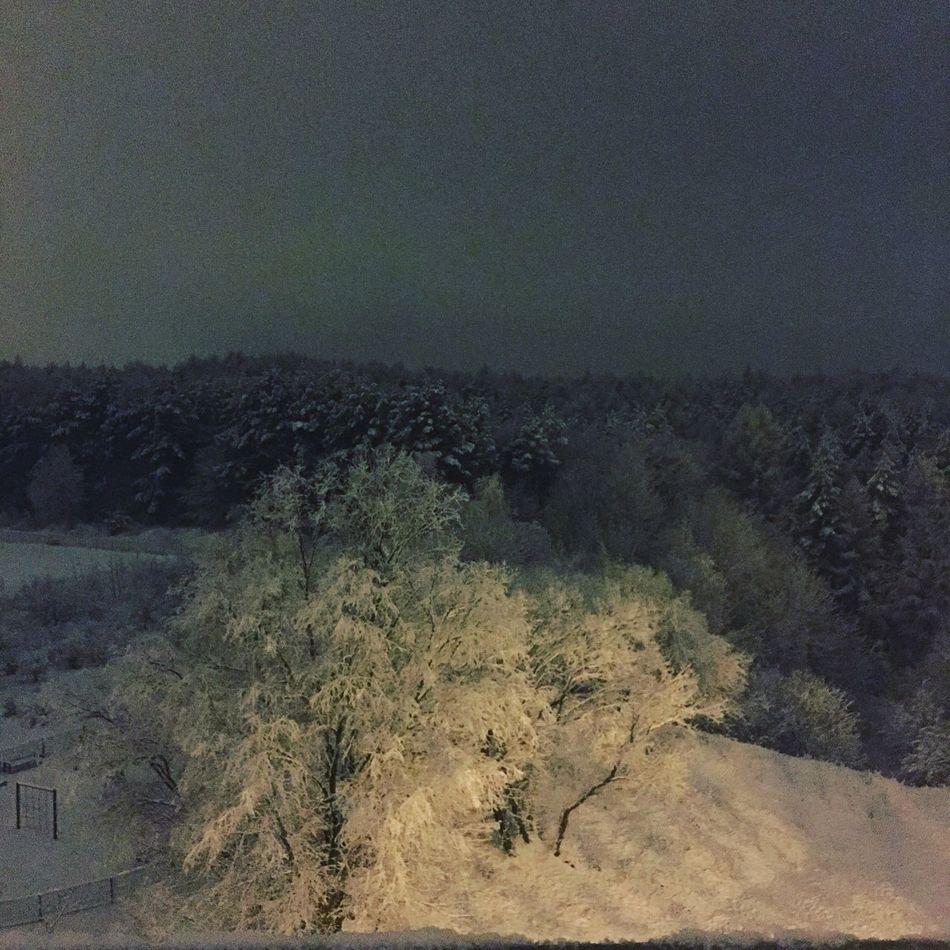 Night Winter Window Nature Snow Home