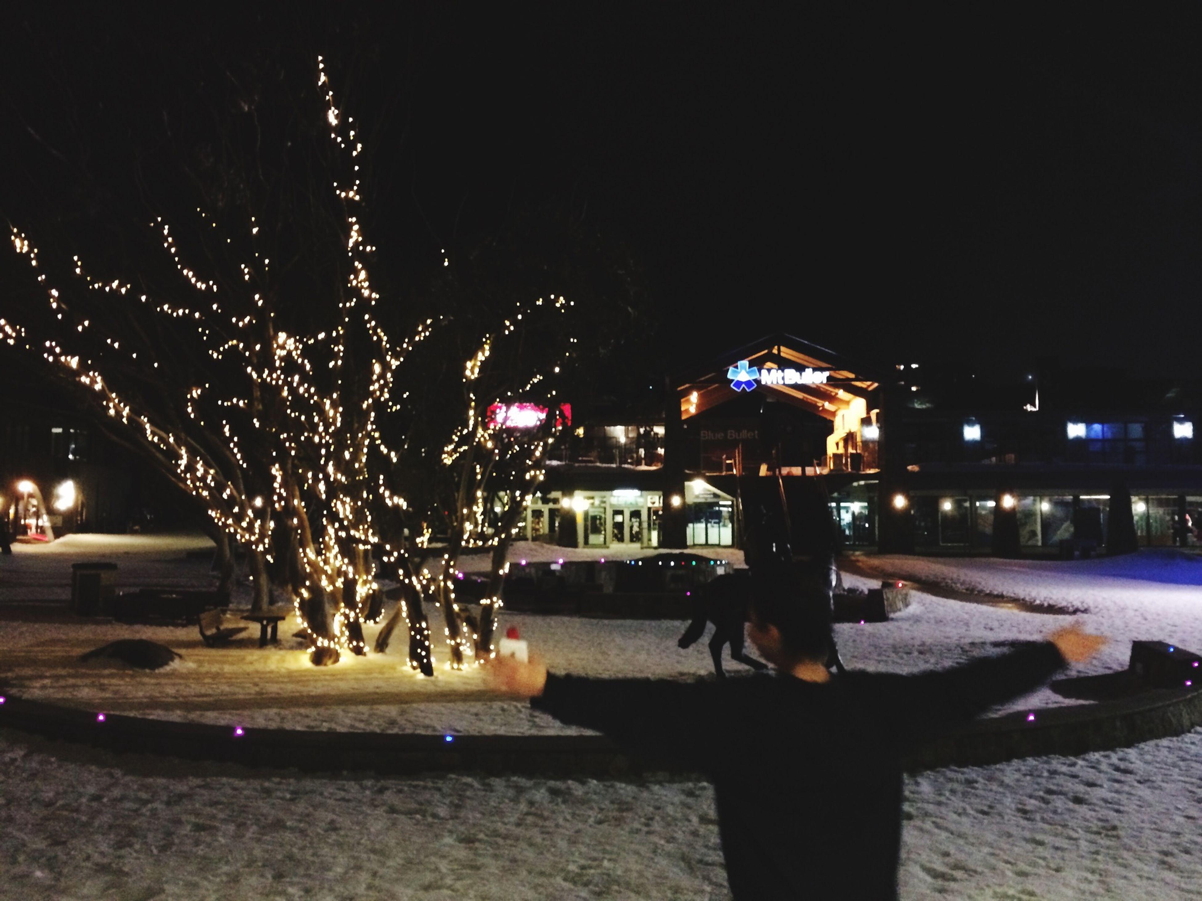 night, illuminated, building exterior, architecture, built structure, city, street light, lighting equipment, street, outdoors, sky, incidental people, city life, clear sky, dark, light - natural phenomenon, tree, water