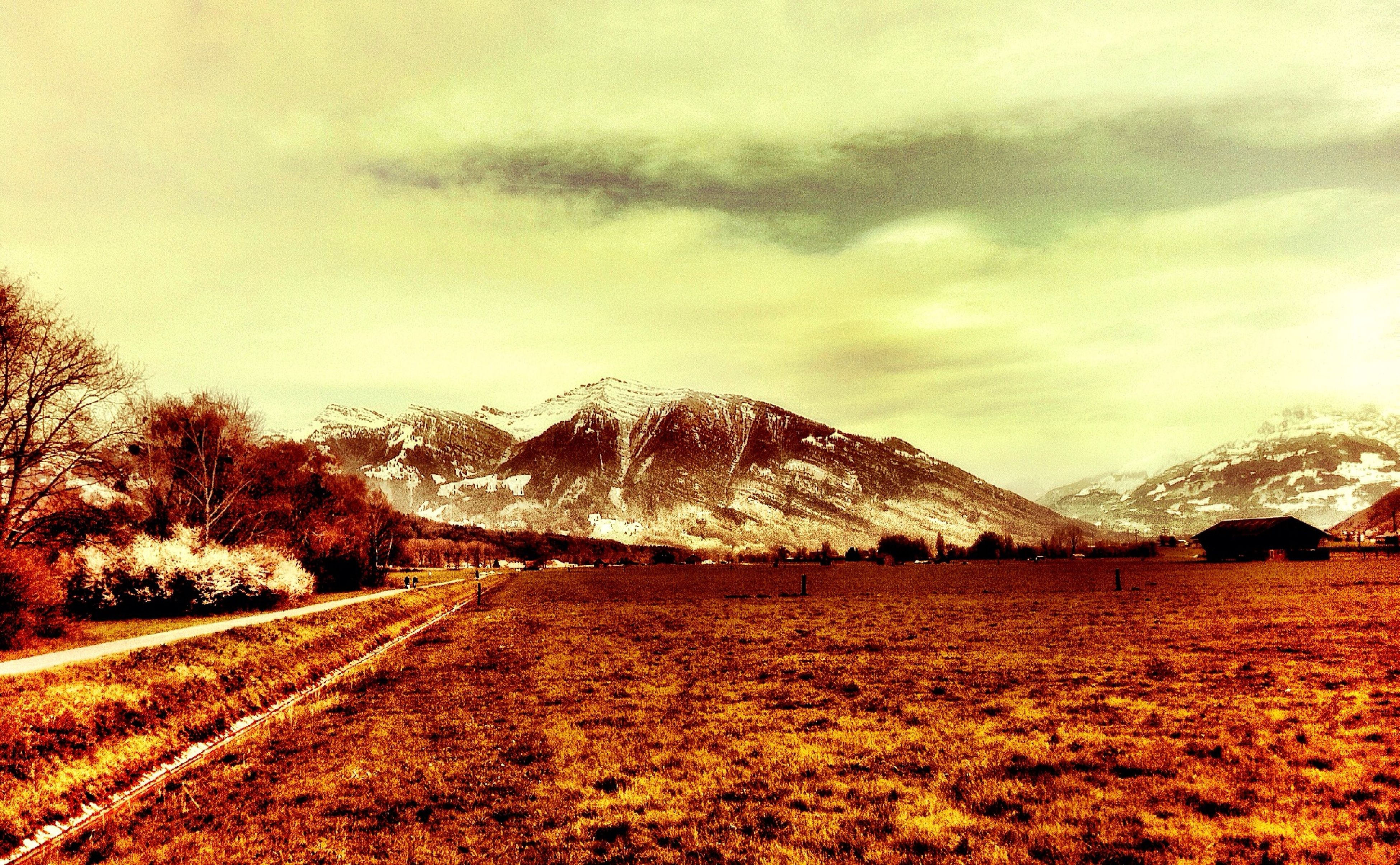 sky, tranquil scene, landscape, tranquility, cloud - sky, mountain, scenics, season, beauty in nature, snow, winter, nature, cold temperature, weather, field, tree, cloudy, the way forward, non-urban scene, cloud